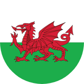 Euro 2020-Wales